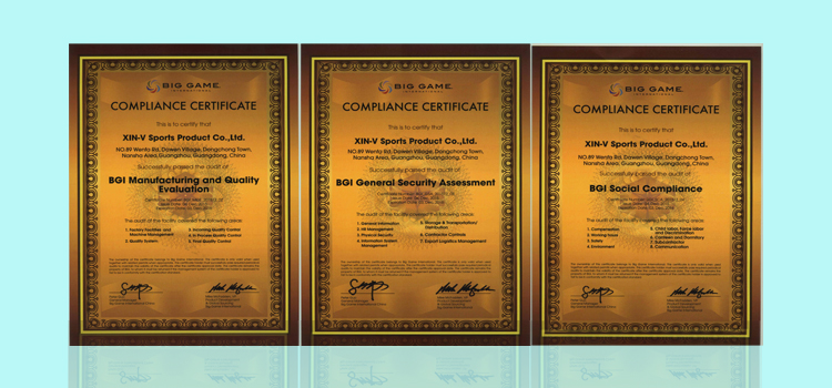 XIN-V -Swimbait Manufacturer, Custom Crankbaits | Xinv-5