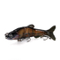 best swimbaits sinking xinv XINV Brand