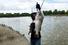 medium trout profound bass lures XINV Brand