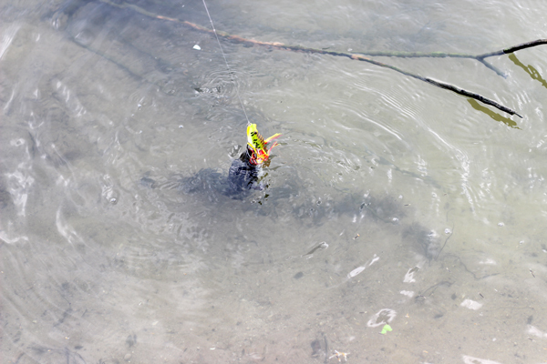 custom soft plastic bait companies fishing Bulk Buy lure XINV