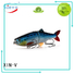 best swimbaits life fishing Bulk Buy walleye XINV